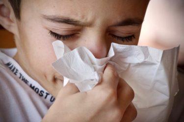 猫アレルギー持ち必見!空気清浄機は、猫との生活をより快適にします